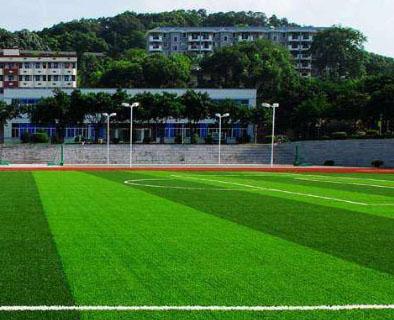 广东东莞小区足球场