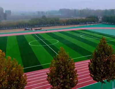 河南清水河中学跑道