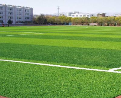 深圳立才学校五人足球场